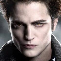 """""""Вампир"""", убивал и пил кровь животных."""