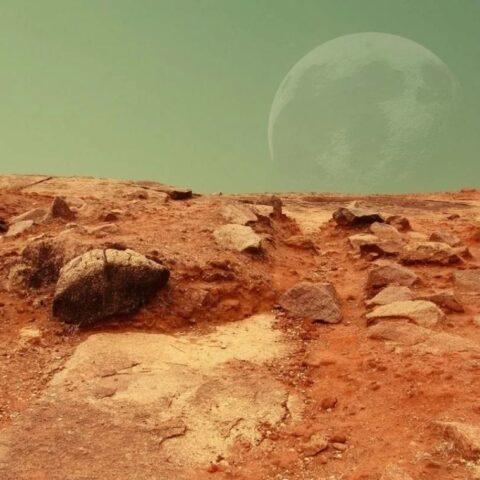 Борис утверждает, что он с Марса.