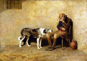 Животные могут проявлять сочувствие так же, как люди.