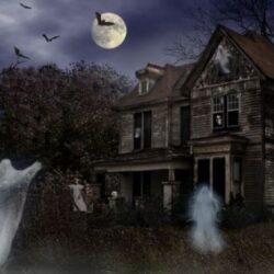 Фирма по недвижимости предлагает отыскать призраков.