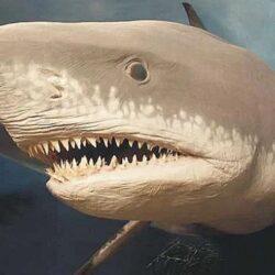 Тайны вымирания в истории планеты. ч1.