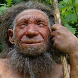 Тайна вымирания в истории планеты. ч2.