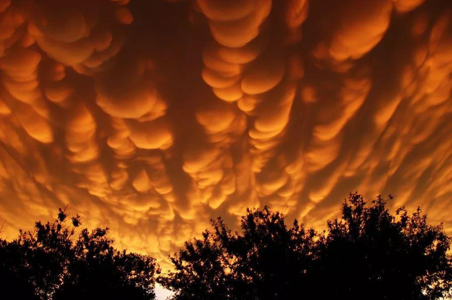 Мамматус Облака.