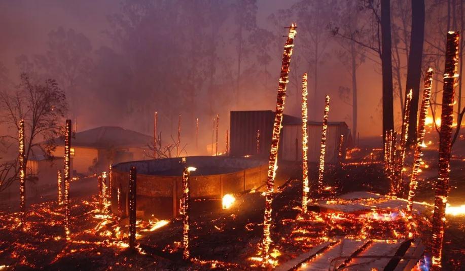 Лесные пожары в Австралии.