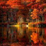 """""""Настала осень золотая. Природа трепетна, бледна, Как жертв..."""
