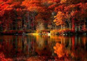 Люди показывают, как выглядит осень во всем мире.