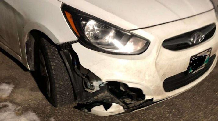 Бородицкий сказал, что он проехал около 90 км/ч, когда он ударил животное на шоссе в Манитобе, Канада.