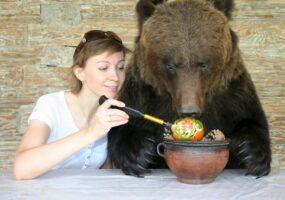 Пчеловод исследует рынок мёда с помощью медведя.