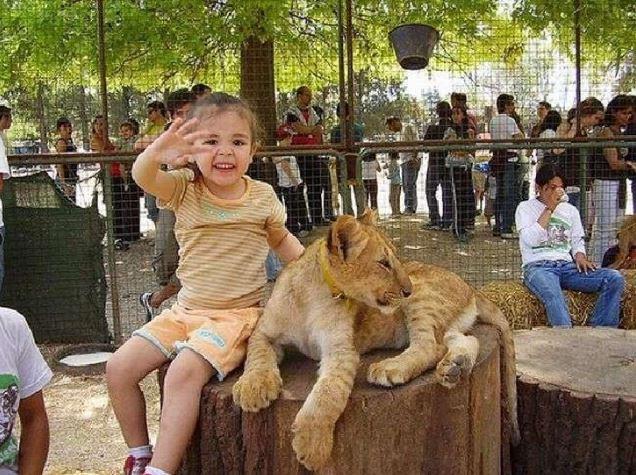 фото: wowamazing.com
