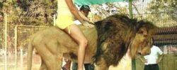 Вы будете шокированы, это самый опасный зоопарк в мире!