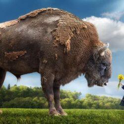 Чрезвычайно крупные животные.