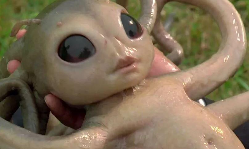 Будут ли дети рожденные в космосе, похожи на инопланетян?
