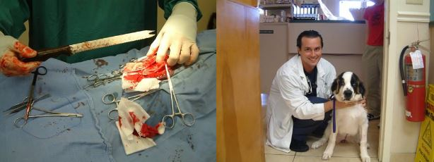 Доктор Карью во время и после операции с Элси - ОНА ВЫЖИЛА!