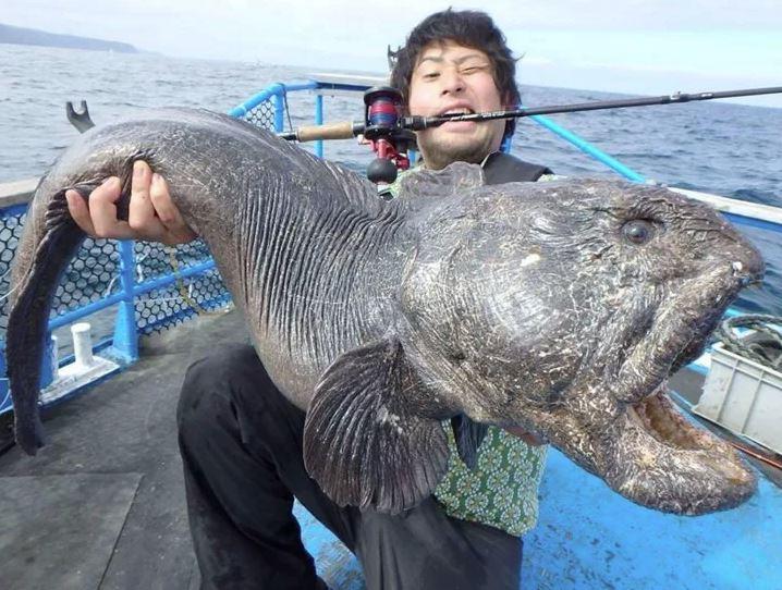Удачливый рыбак.