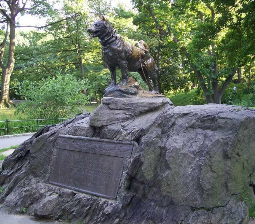 Памятник Балто. Установлен в Нью-Йорке.