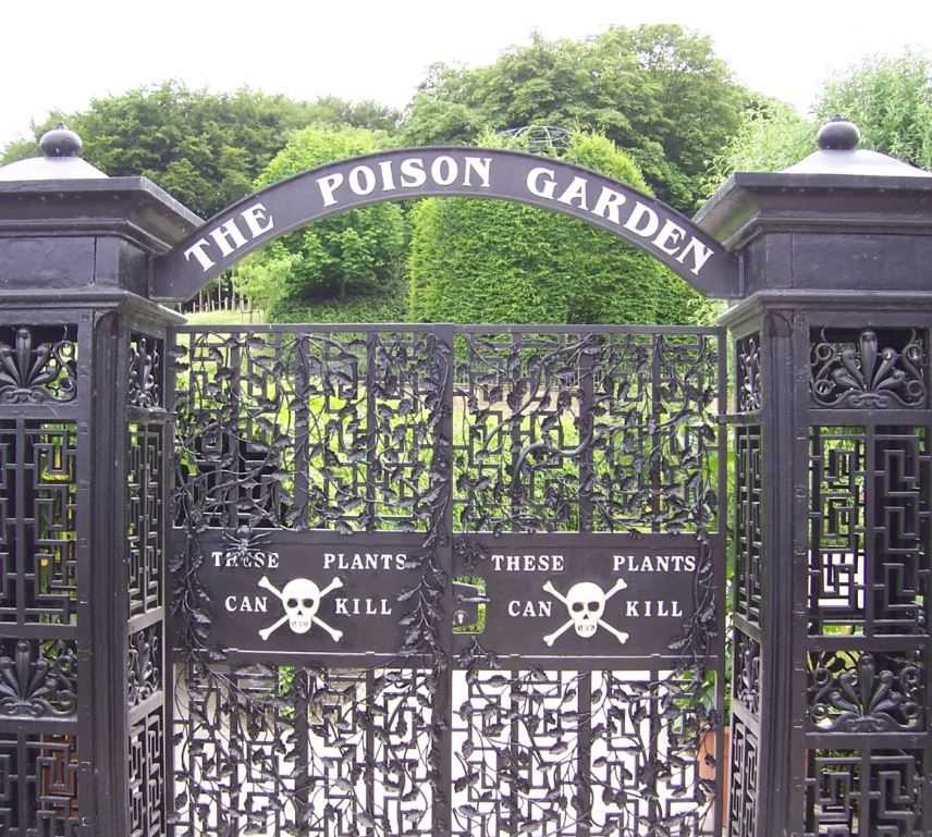 Ядовитый сад герцогини Нортумберлендской.