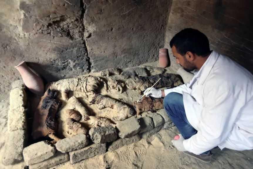Египетская гробница с мумиями кошек.