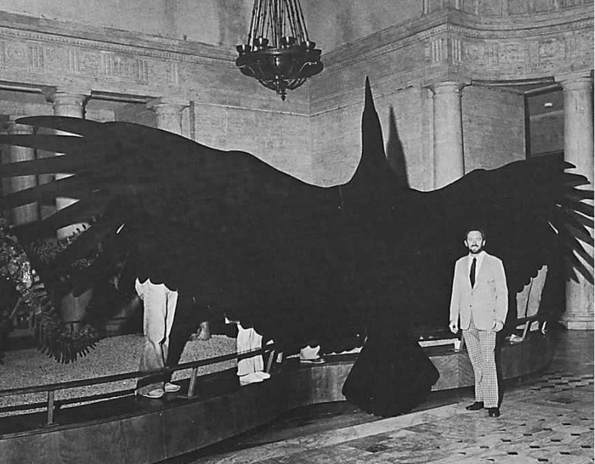 Это самая большая известная науке летающая птица за всю историю.