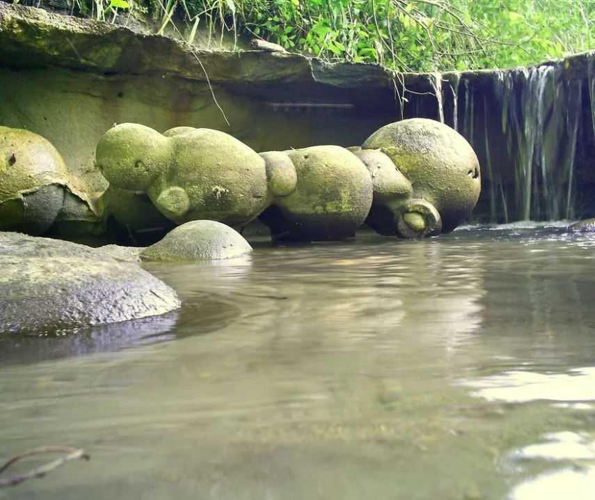 Трованты - неразгаданная/разгаданная загадка природы, живые, растущие камни.