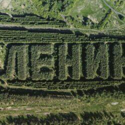 """Сибирский лес сформирован, в виде надписи """"Ленин"""""""