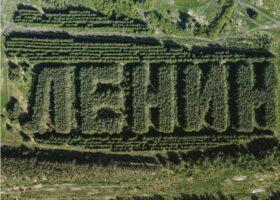 Сибирский лес сформирован, в виде надписи «Ленин»