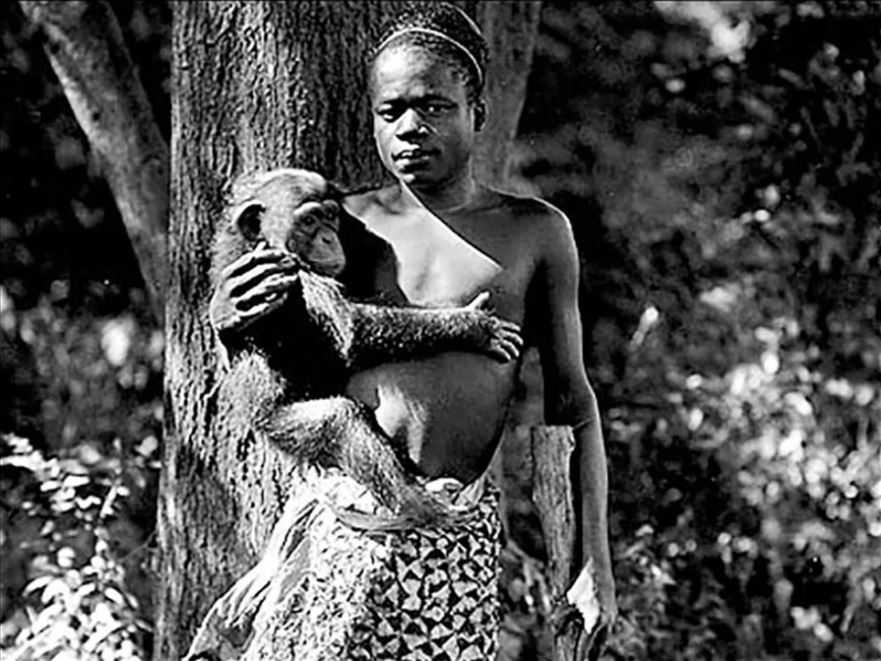 Фотография Ота Бенги, сделанная в 1906 году и описанная как сделанная в зоопарке Бронкса. Автор неизвестен.