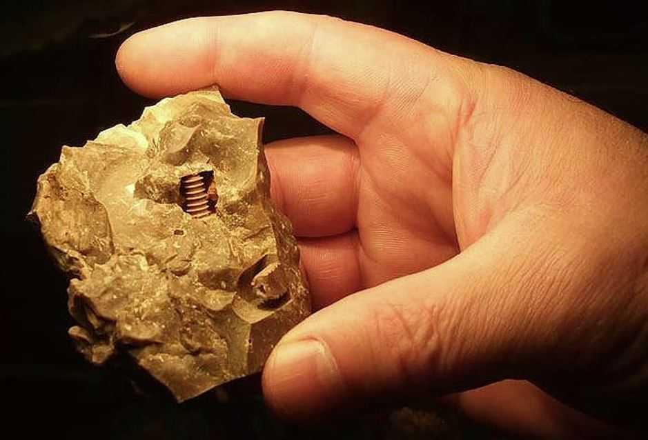 Археологов поставил в тупик железный винт возрастом 300 млн лет.
