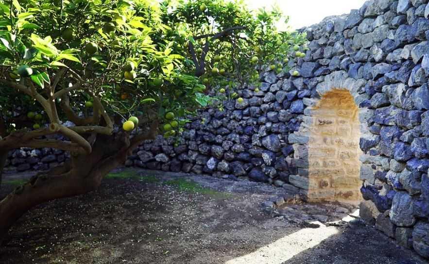 Старинные сады острова Пантеллерия в Средиземном море.