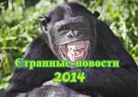 СТРАННЫЕ НОВОСТИ, ПРОИЗОШЕДШИЕ В 2014 ГОДУ