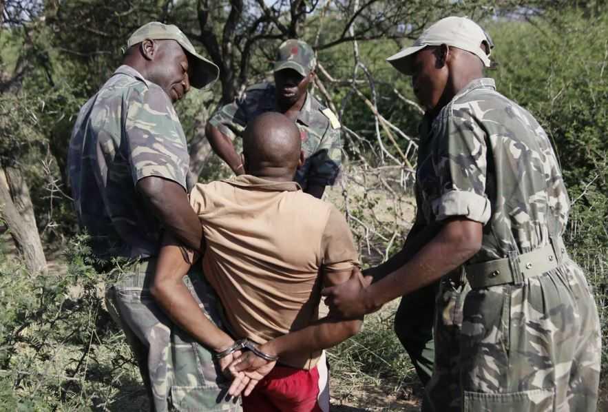 Задержание браконьеров в Африке.