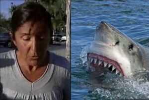 Мама при помощи двух  серферов спасла свою дочь от акулы.