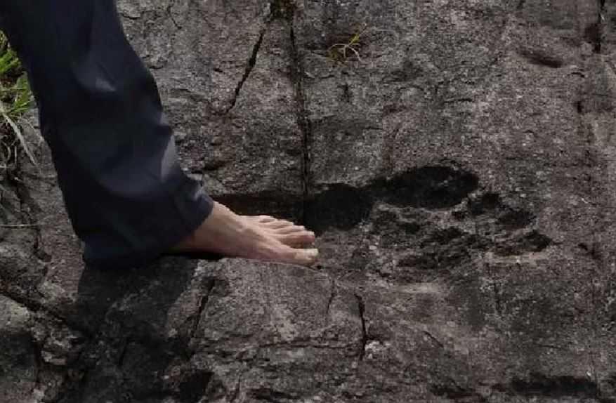 Гигантские окаменелые следы вызвали переполох в Китае.