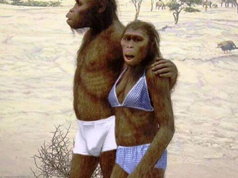 Сотни тысяч лет назад люди прошли