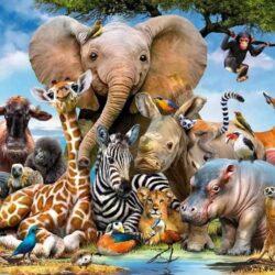Многие случайные и очень интересные факты о животных