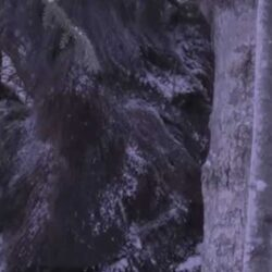 Снежный человек попался на камеру наблюдения