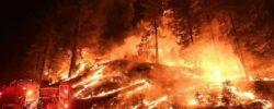 Космические лазерные заговоры и лесные пожары
