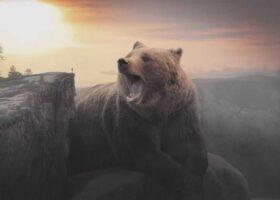 История о духе медведя: призрачном и огромном