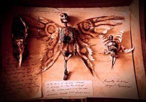 Странные существа: подключение и перезагрузка