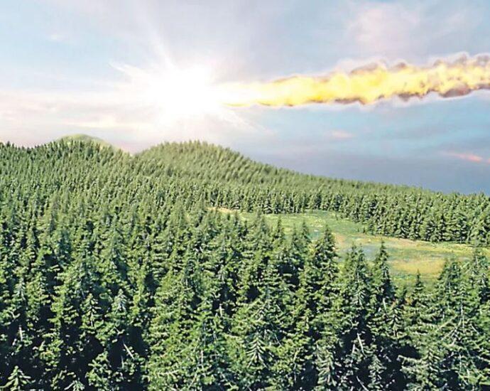 НЛО сбил Тунгусский метеорит, чтобы спасти Землю.