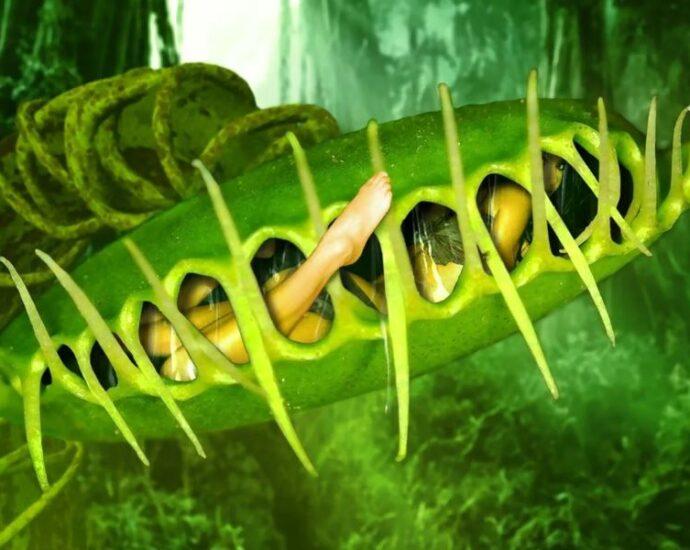 Плотоядные растения: легенды флоры-людоедки.