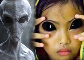 Поколение гибридов: возможна ли связь людей с инопланетянами