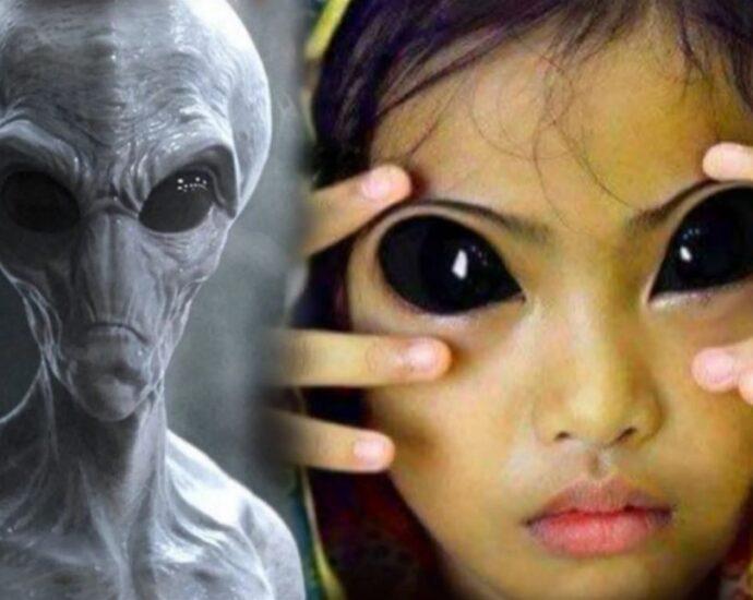 Поколение гибридов: возможна ли связь людей с инопланетянами.