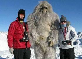 Снежный человек: убедительные наблюдения