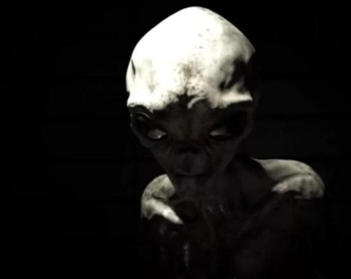 Интервью с пришельцем: мистификация или реальность?