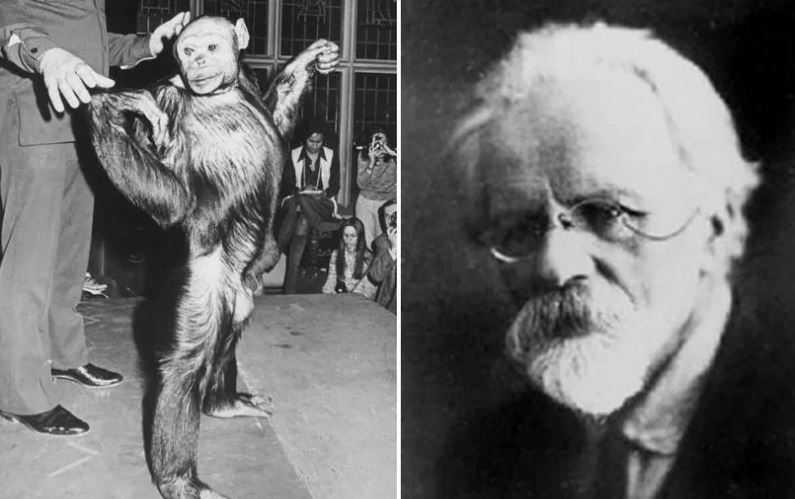 В 1920-х годах, русский биолог Илья Иванов разрабатывал план скрещивания людей с обезьянами.