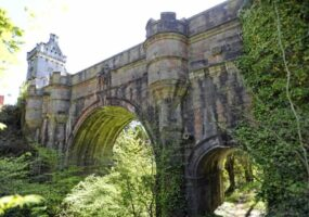 Мост Овертоун: место собачьих самоубийств