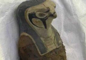 Мумия, не человеческого происхождения