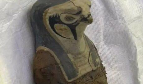 Мумия, не человеческого происхождения.