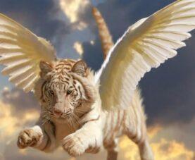 Легенды о животных, как посланников богов