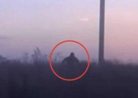 Шурале: странное существо преследует машину в России